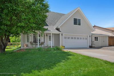 Silt Single Family Home For Sale: 853 Antler Point Lane