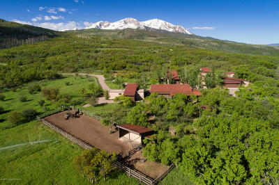 Basalt Single Family Home For Sale: 1601 Sopris Mountain Ranch Road