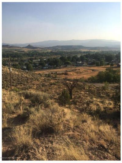 Silt Residential Lots & Land For Sale: Tbd County Road 218