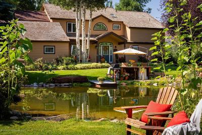 Basalt Single Family Home For Sale: 174 Lewis Lane