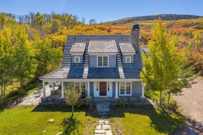 Basalt Single Family Home For Sale: 1301 Old Herron Road