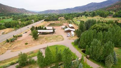 Basalt Commercial For Sale: 100 & 165 Hoaglund Ranch Road