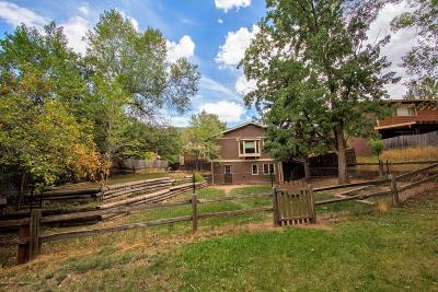 Glenwood Springs Single Family Home For Sale: 986 Glen Oak Lane
