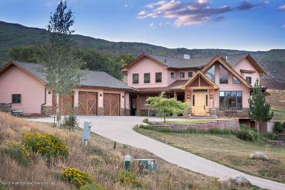 Glenwood Springs Single Family Home For Sale: 317 Spring View Drive