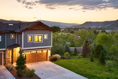 Carbondale Condo/Townhouse For Sale: 219 Overlook Ridge