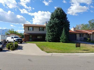 Carbondale Single Family Home For Sale: 550 Dakota Court