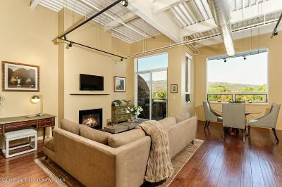 Basalt Condo/Townhouse For Sale: 361 Robinson Street #302