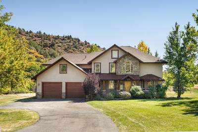 Glenwood Springs Single Family Home For Sale: 183 Meadow Wood Road