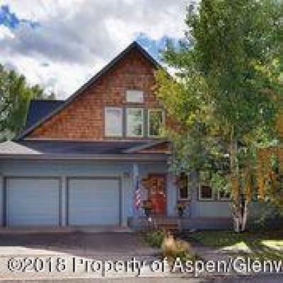 Basalt Single Family Home For Sale: 527 Lake Court