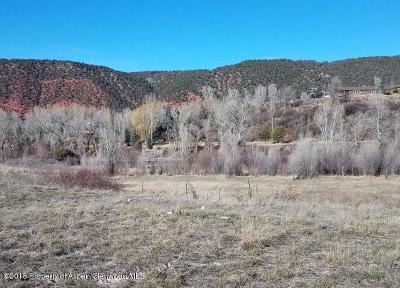 Glenwood Springs Residential Lots & Land For Sale: 248 River Bank Lane