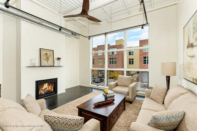 Basalt Condo/Townhouse For Sale: 361 Robinson Street #210