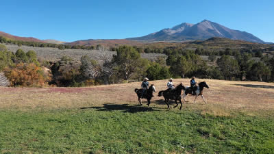 Carbondale Farm & Ranch For Sale: Tbd Prince Creek Road