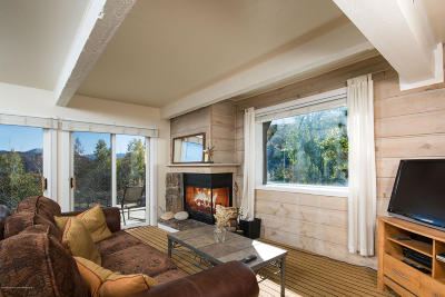 Snowmass Condo/Townhouse For Sale: 55 Upper Woodbridge Road #K-2