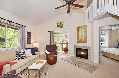Basalt Condo/Townhouse For Sale: 5203 Elk Lane