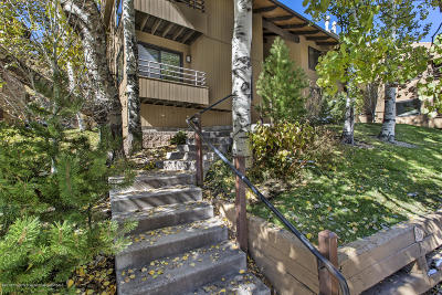 Snowmass Condo/Townhouse For Sale: 35 Lower Woodbridge Road #Z-194