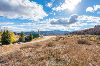 Snowmass Residential Lots & Land For Sale: 345 Branding Lane