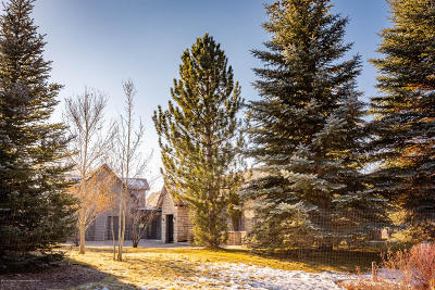 Carbondale Single Family Home For Sale: 200 W Diamond A Ranch Road