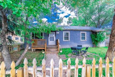Carbondale Single Family Home For Sale: 665 Colorado Avenue
