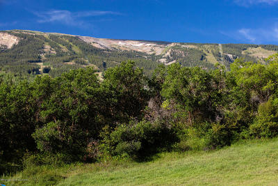 Snowmass Residential Lots & Land For Sale: 196 Terrace Drive