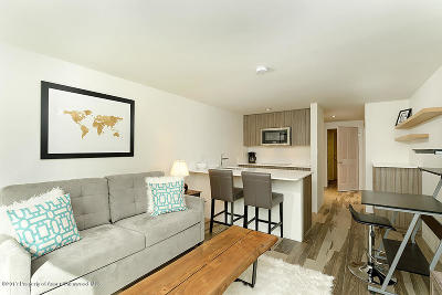Aspen Condo/Townhouse For Sale: 119 E Cooper Avenue #Unit 27