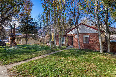 Glenwood Springs Single Family Home For Sale: 1217 Grand Avenue
