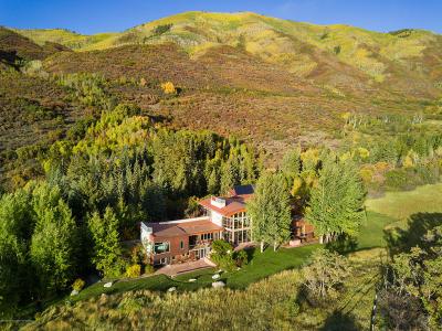 Aspen Single Family Home For Sale: 700 Nell Erickson