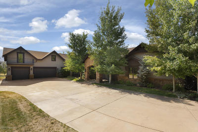 Carbondale Single Family Home For Sale: 540 Fox Run Drive