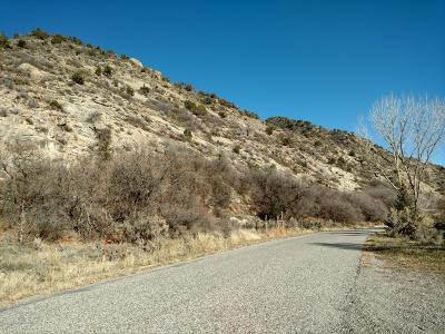 New Castle Residential Lots & Land For Sale: Tbd County Road 314