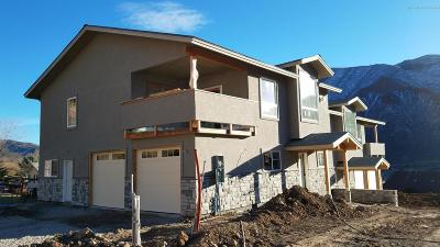 Glenwood Springs Single Family Home For Sale: 46 Gamba Drive