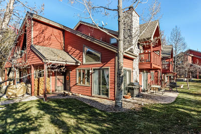 Basalt Condo/Townhouse For Sale: 46 Silverado Drive
