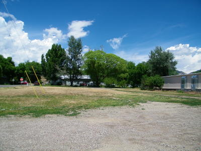 Silt Commercial Lots & Land For Sale: 332 Main Street