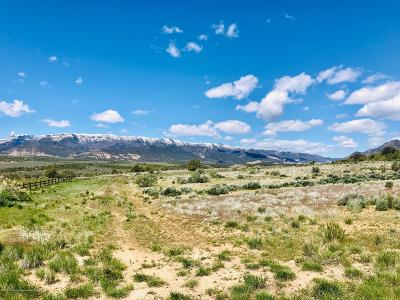 Rifle Residential Lots & Land For Sale: 886 Mesa Drive