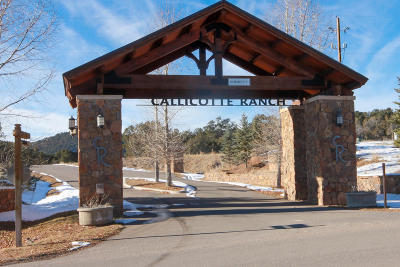 Carbondale Residential Lots & Land For Sale: 1181 Callicotte Ranch Lot 28