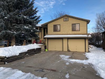 Glenwood Springs Single Family Home For Sale: 992 Glen Oak Lane