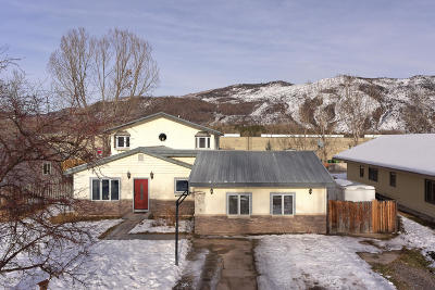 Carbondale Single Family Home For Sale: 145 Cheyenne Avenue