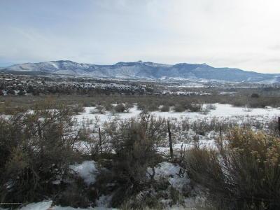 Battlement Mesa, Parachute Farm & Ranch For Sale: Tbd Highway 6 & 24