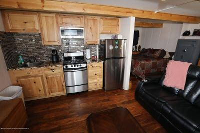 Glenwood Springs Condo/Townhouse For Sale: 11101 Co Rd 117 #Unit 4-