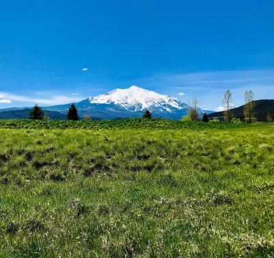 Carbondale Residential Lots & Land For Sale: 376 Crystal Canyon Drive