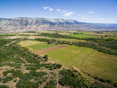 Battlement Mesa, Parachute Farm & Ranch For Sale: 5706 Cr 301