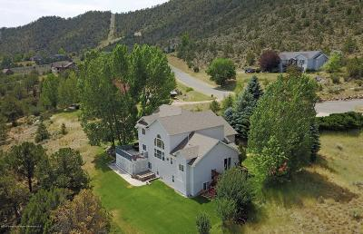 Glenwood Springs Single Family Home For Sale: 1135 Huebinger Drive