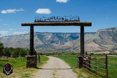 Battlement Mesa, Parachute Farm & Ranch For Sale: Tbd Cr 301