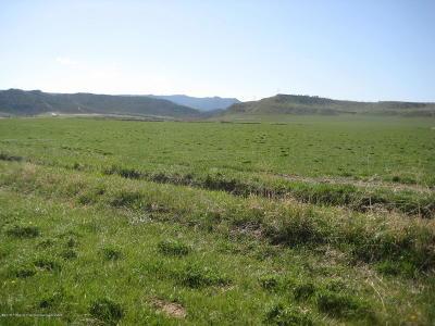 Silt Farm & Ranch For Sale: Tbd County Rd 311