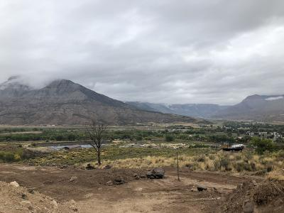 Battlement Mesa, Parachute Residential Lots & Land For Sale: 35 Willowview Way