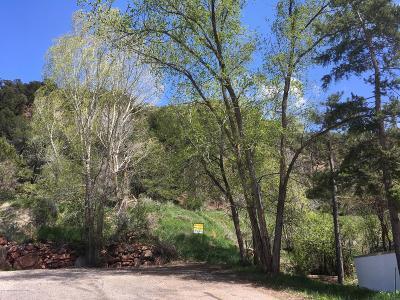 Glenwood Springs Residential Lots & Land For Sale: Tbd Crestwood Drive