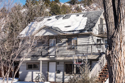 Glenwood Springs Condo/Townhouse For Sale: 740 Palmer Avenue