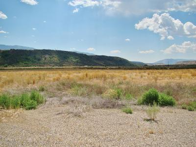 Rifle Commercial Lots & Land For Sale: Tbd Centennial Parkway