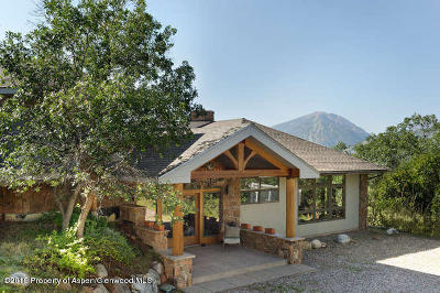 Aspen, Snowmass Single Family Home For Sale: 81 Danielson Drive