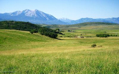 Glenwood Springs Farm & Ranch For Sale: Tbd County Road 121