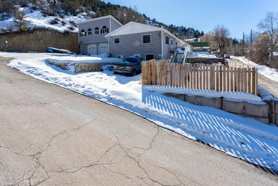 Glenwood Springs Single Family Home For Sale: 1002 Minter Avenue