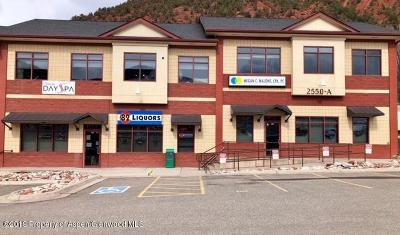 Glenwood Springs Commercial For Sale: 2550 Highway 82 #A116